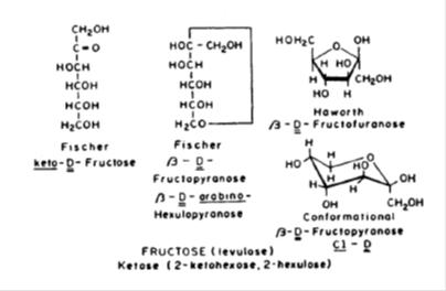 Jurnal metabolisme sel